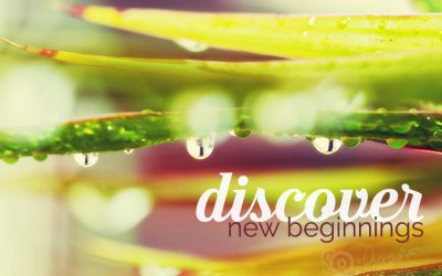 Discover New Beginnings