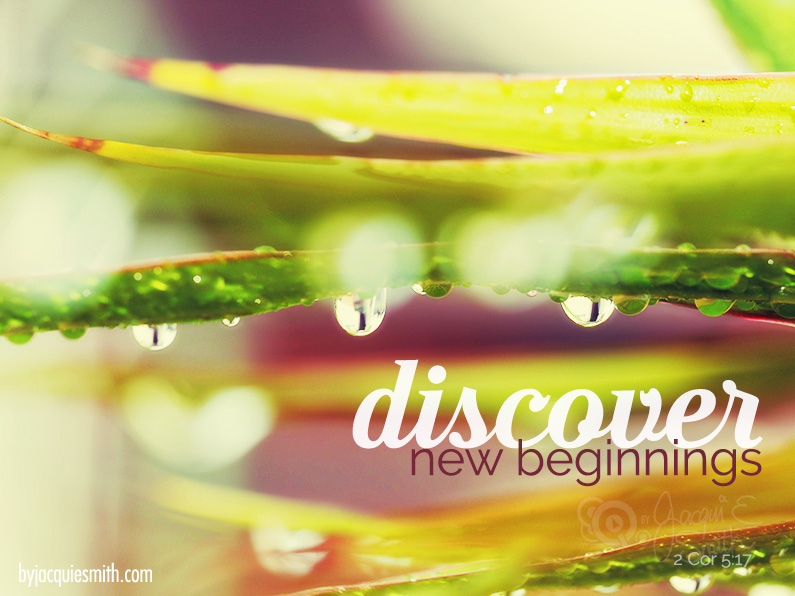 New Beginnings by Jacqui E Smith